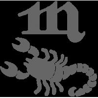 0565. Знак зодиака Скорпион