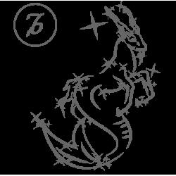 0573. Знак зодиака контуром Козерог