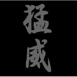 0644. Иероглиф Гнев