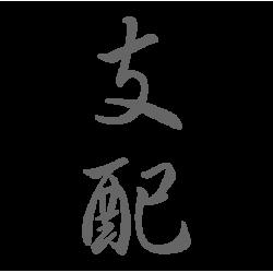 0645. Иероглиф Господство