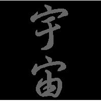 0652. Иероглиф Космос-Вселенная