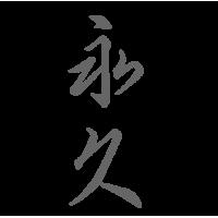0655. Иероглиф Мечта