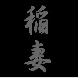 0656. Иероглиф Молния-Гроза