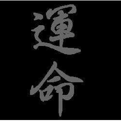 0662. Иероглиф Судьба