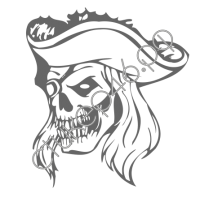 0690. Череп пират