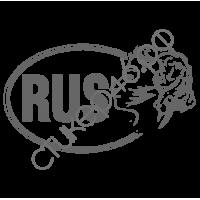 0762. Наклейка RUS с Пушкиным