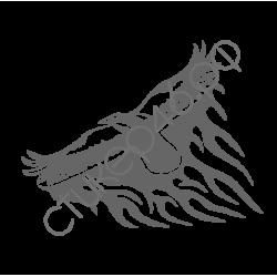 0777. Орёл огненный