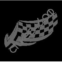 0816. Флаг гоночный