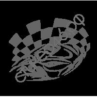 0831. Racing спорт