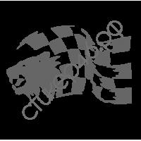 0833. Racing гонки