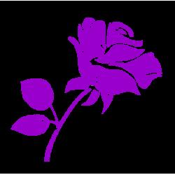0864. Роза