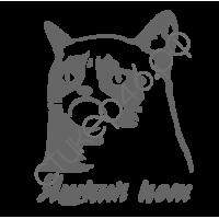 0908. Яшкин кот