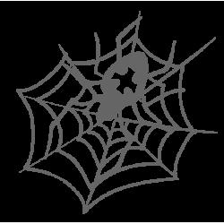 0920. Паук с паутиной