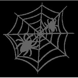 0921. Паук с паутиной
