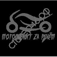 1041. Мотоциклист за рулём