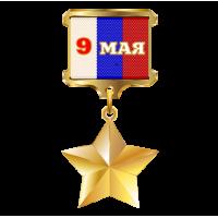 """1235. Наклейка """"Золотая звезда  Герой России"""""""
