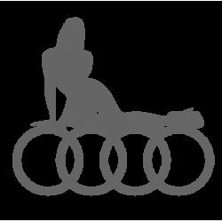 """1272. Наклейка """"Audi seksi"""""""
