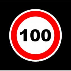 """1305. Наклейка """"Знак ограничение скорости"""" 100 км/ч"""
