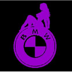 """1574. Наклейка на авто """"BMW  Секси"""""""