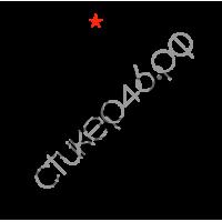 """1576. Наклейка на авто """"Путин Славяне"""""""